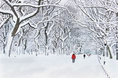 Away from the hustle and bustle of the Macy's holiday windows, Manhattan's famed Central Park becomes a winter wonderland under a thick coat of powdery snow.   - CountryLiving.com