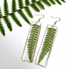 Real pressed fern resin earrings - Handmade with real pressed ferns and eco resin. Natural jewellery, eco resin jewellery :) These earrings are showcasing real ferns. The fern was pressed and dried and then embedded into the clear resin, that will preserve its beauty for a long time.