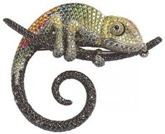 Google Image Result for http://www.michiganreptilerescue.org/wp-content/uploads/2011/04/chameleon-jewelry.jpg