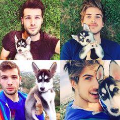 joey graceffa dog wolf - Google Search
