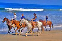 Puerto Vallarta Horseback Beach Riding Excursion