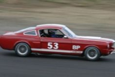 This 1966 Ford Mustang (chassis 6R07T140146) is setup for road racing in SVRA Group 6 and is said to be race ready and in very good condition. Offered with a clean New Mexico title, the car remains street legal and runs a freshened, race-spec 302 and quite a bit more detailed further below and in th