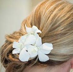 Would love to  have white oleander flowers @ my wedding.