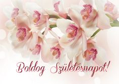 Birthday Cards, Birthday Gifts, Happy Birthday, Name Day, Birthday Cupcakes, Flower Arrangements, Rose, Flowers, Forever Aloe