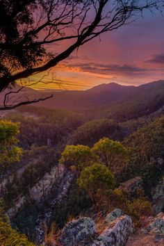 Made a spur of the moment decision to drive up to the Leven Canyon to see what it would be like as a sunset location. Western Australia, Australia Travel, Beautiful World, Beautiful Places, Luxury Travel, Travel Oz, Adventure Is Out There, Tasmania, Land Scape