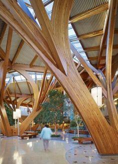 Tye Farrow's Credit Valley Hospital cancer centre atrium in Toronto.
