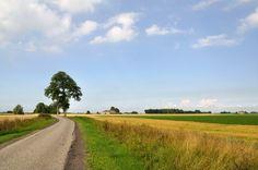 Oude Ruigezandsterpolder - De Teenstraweg, waaraan de meeste huizen en boerderijen in de polder liggen, is vernoemd naar de gebroeders Douwe en Aedsge Teenstra, die de polder in 1792 kochten. . Foto: Wout van Groenestijn.