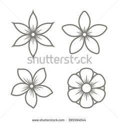 Jasmine Flower Drawings Bing Images Finishes Tattoos Jasmine
