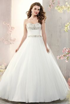 e64e07310598f1 84 Best ball gown dresses images