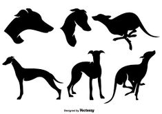 Image result for whippet hat patterns