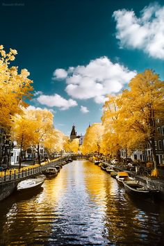 the canals of Amsterdam in fall