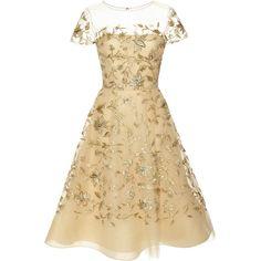 Oscar de la Renta Embellished Tulle Dress (€2.200) ❤ liked on Polyvore featuring dresses, oscar de la renta dresses, wet look dress, oscar de la renta, embroidered dress and brown dress