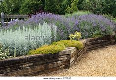 Old railway sleepers used to create a raised bed at Norfolk Lavender Garden Centre, Norfolk, UK - Stock Image