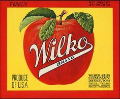 http://scout901.hubpages.com/hub/free-cross-stitch-chart-Wilko-Apples