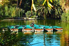 #Barcelona #park #walk #picnic #greenery #Bonavista #trees #palmtrees #watersource #littleboats  #CiutadellaPark #ParcdelaCiutadella