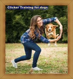 How to Prevent Resource… #dogtrainingcourse Puppy Toilet Training, Police Dog Training, Therapy Dog Training, Dog Training Near Me, Dog Clicker Training, Service Dog Training, Dog Training Courses, Best Dog Training, Leash Training