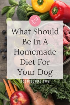 What Should Be In A Homemade Diet For Your Dog? Dishing up healthy homemade dog food is easy and fun. No need for complicated recipes. DIY Home made maybe a better option. Here're some tips on what's a good formula for a homemade diet for your dog. Make Dog Food, Best Dog Food, Home Cooked Dog Food, Homemade Dog Treats, Healthy Dog Treats, Pet Treats, Homemade Food, Healthy Food, Dog Treat Recipes