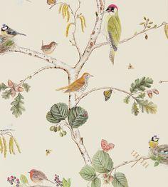 Woodland Chorus Wallpaper by Sanderson | Jane Clayton