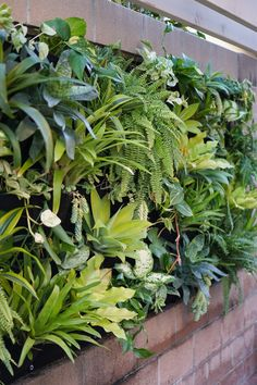 Vertical Plant Pocket Wall Garden - Dalla Vita