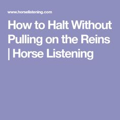 How to Halt Without Pulling on the Reins | Horse Listening