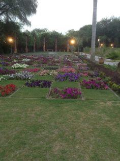 Gulshan e ahmad in late spring