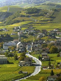 "Along the Wine Route in the Rhone Valley (Swiss side). View above the village of Salgesch, called ""the wine village"" Places To Travel, Travel Destinations, Places To Visit, Wonderful Places, Beautiful Places, Central Europe, Future Travel, Wanderlust Travel, Travel Photos"