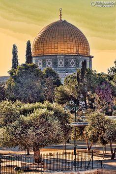 .le Dôme du Rocher dans toute sa  splendeur - Free Palestine -