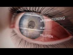 Take a journey through the human eye and how it works with this fantastic video, Wonder of the Human Eye. This is a great educational video for all ages.