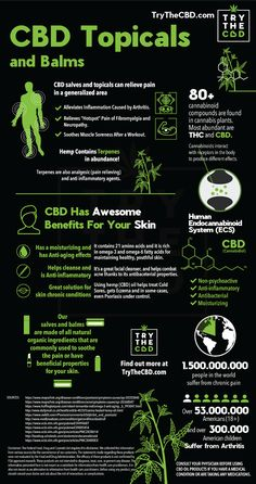 CBD Lotion - Cannabis Pain Cream Buy CBD Lotion CBD CREAM-