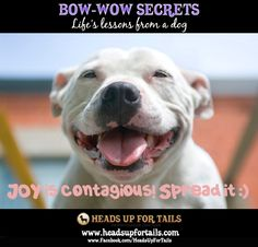 Joy is contagious- spread it!