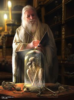 archetypal wizard and enchanter...once and future king style