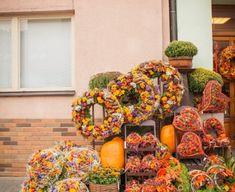 Floral Wreath, Gardening, Wreaths, Home Decor, Fall Season, Autumn, Floral Crown, Decoration Home, Door Wreaths