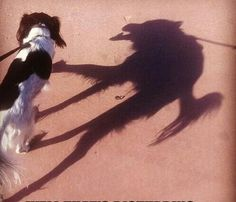 Wow! His inner beast was visible only in his shadow!