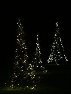 week 50: Merry Christmas!