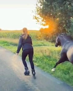 Funny Horses, Cute Horses, Pretty Horses, Horse Love, Beautiful Horses, Animals Beautiful, Cute Animal Videos, Funny Animal Pictures, Cute Little Animals