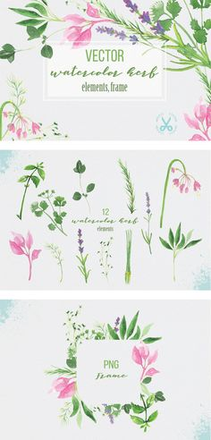 Watercolor herbs & edible flowers graphic resource by Paperon Design in Creative Market