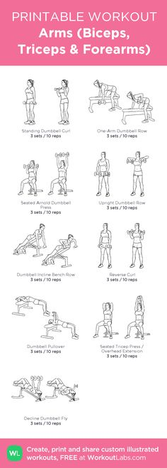 Training the arms (biceps, triceps and forearms). - Fashion women 60 - Training the arms (biceps, triceps and forearms). Fitness Memes, Sport Fitness, Biceps And Triceps, Triceps Workout, Forearm Workout, Boxing Workout, Gym Workout Plans, Skinny Arms Workout, Dumbell Workout For Arms