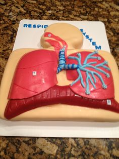 Respiratory system cake - making it sweet to learn!