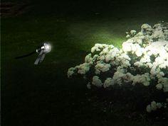 Come illuminare un giardino con i #faretti #RGB - #consigli di #illuminazione da #esterni