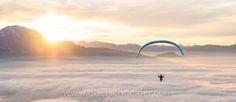 Man paragliding above clouds, Alps, Salzburg, Austria , Flies Away, Above The Clouds, Paragliding, Sydney Harbour Bridge, Facebook, Alps, Order Prints, My Images, Instagram