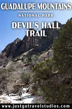 Check out what there is to see on the Devil's Hall Trail in Guadalupe Mountains National Park!