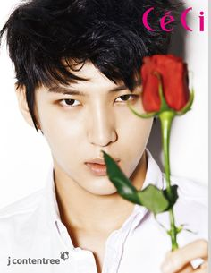 VIXX Leo ♥__♥