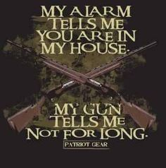 Gun Alarm