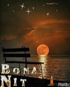 Bona Nit GIF - BonaNit - Descubre & Comparte GIFs