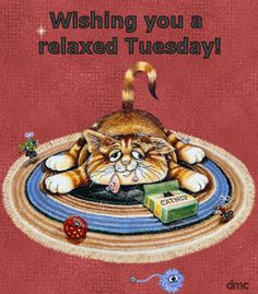 Wishing you a relaxing Tuesday funny day cat days of the week tuesday weekday tuesday greeting