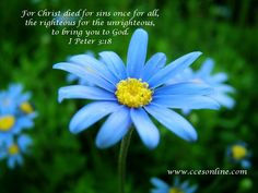 1 Peter 3:18 ~ For Christ died for sins once for all, the righteous for the unrighteous, to bring you to God.