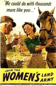 BRITISH WW II.Land army.With the country at war and all able-bodied men needed to fight, there was a shortage of labour to work on farms and in other jobs on the land. The government wanted to increase the amount of food grown within Britain. In order to grow more food, more help was needed on the farms and so the government started the Women's Land Army.  16