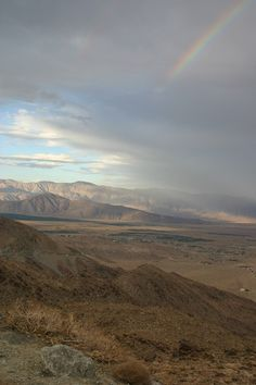 Am I in heaven or is it Anza Borrego?