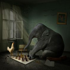 Pawns and Castles ~ no ~ Elephant and Chicken !