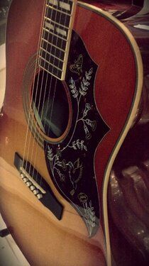 Hummingbird #Acoustic #Guitar